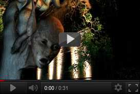 Effetti speciali programma televisivo Sesto Senso (2003) | produzioni tv  | Video Industriali | Filmati Aziendali | Giuseppe Galliano Multimedia Studio |