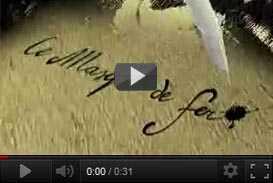 filmato promozionale cd rom La Maschera di Ferro (1997) | video industriali filmati istituzionali  | Video Industriali | Filmati Aziendali | Giuseppe Galliano Multimedia Studio |
