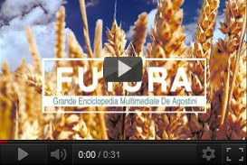 filmato istituzionale enciclopedia Futura (2004) | video industriali filmati istituzionali  | Video Industriali | Filmati Aziendali | Giuseppe Galliano Multimedia Studio |