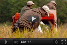 Video aziendale PhosAgro (2017) | video industriali filmati istituzionali  | Video Industriali | Filmati Aziendali | Giuseppe Galliano Multimedia Studio |